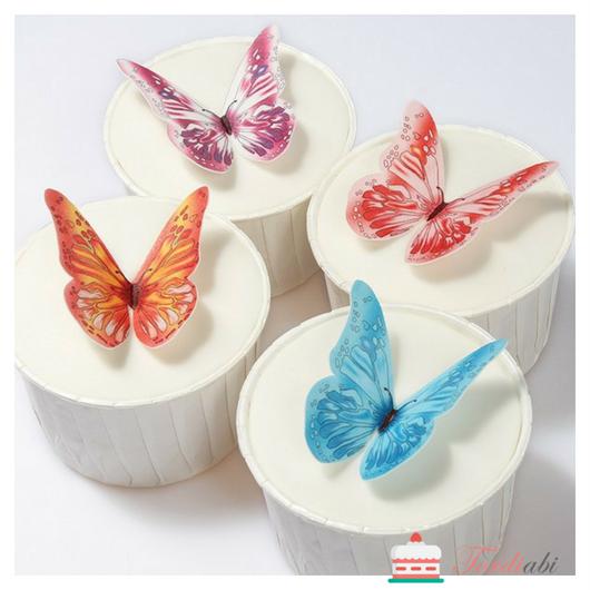Tordiabi vahvlist liblikad 4 erinevat