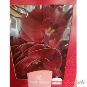 Tordiabi tumepunased orhideed