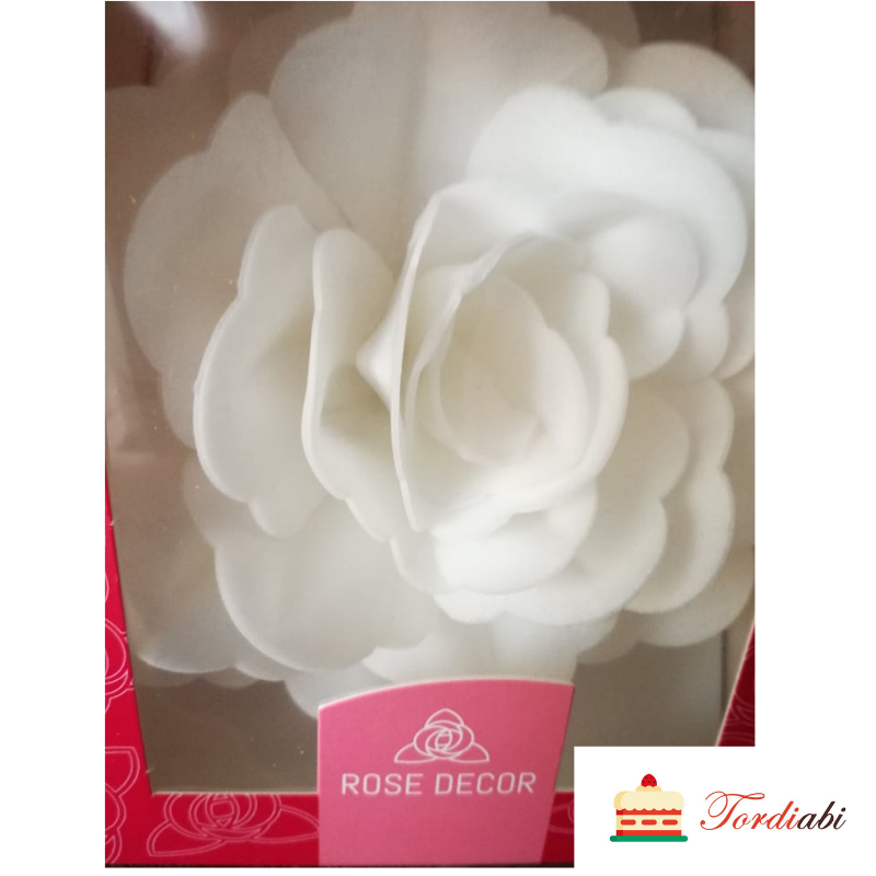 Tordiabi lumivalge suur roos