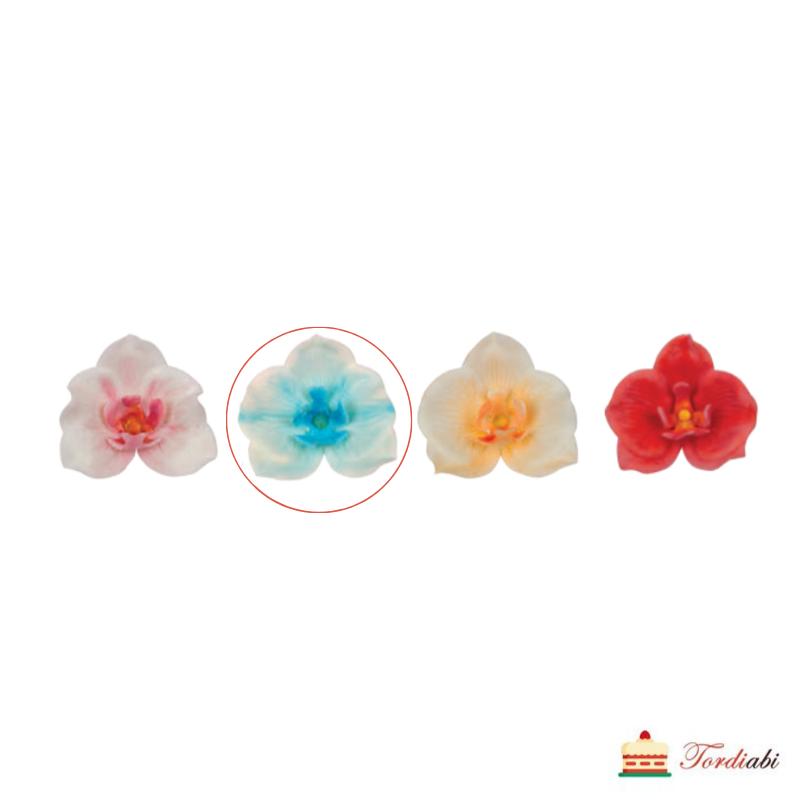 tordiabi-suhkru-kaunistus-sinine-orhidee