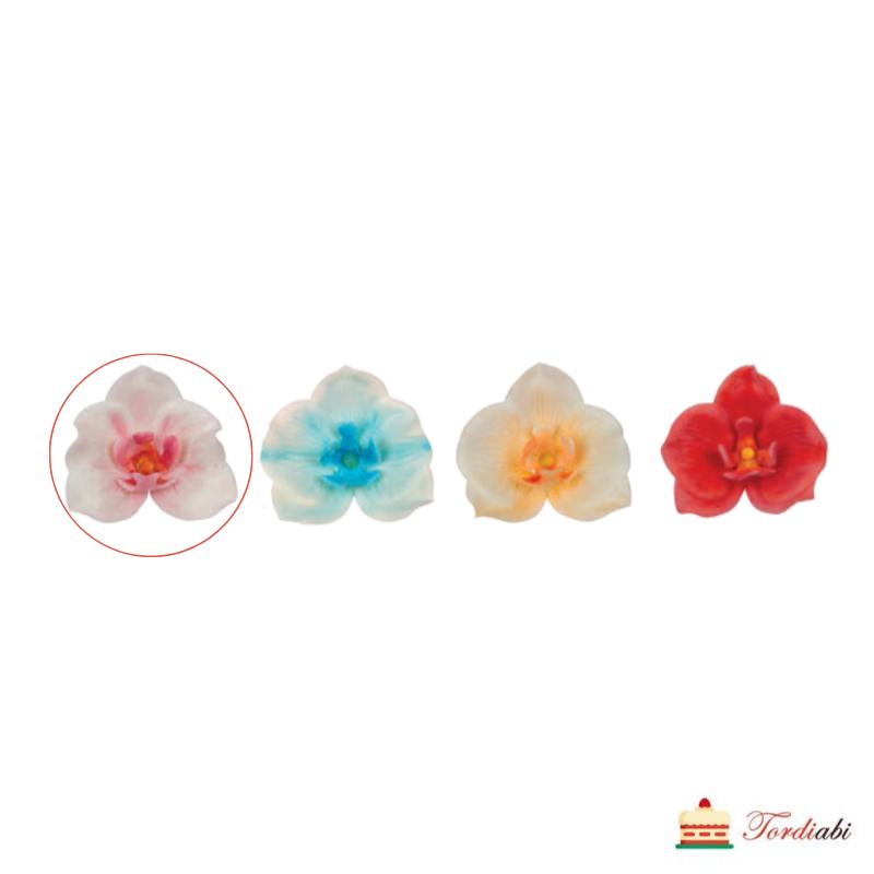 tordiabi-suhkru-kaunistus-valge-orhidee- roosa -südamik