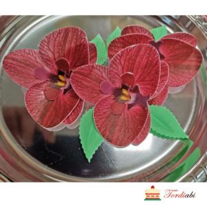 Tordiabi 3 punast vahvlist orhideed lehtedega