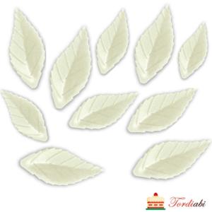 Tordiabi valged vahvlist lehed