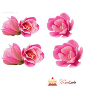 Tordiabi vahvlililled roosad magnooliad