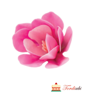 Tordiabi vahvlist roosa magnoolia