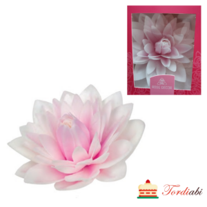 Tordiabi vahvlidekoor suur roosakas valge daalia