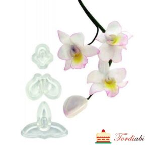 Tordiabi orhidee vorm singapur Jem